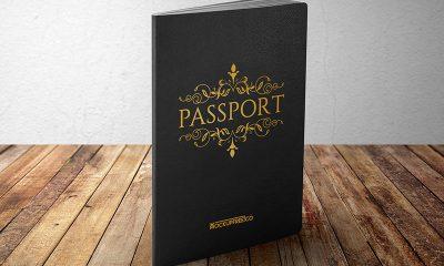 3b0897419b167783731437bba8dab7a0 400x240 - Passport – 10 Free PSD Mockups