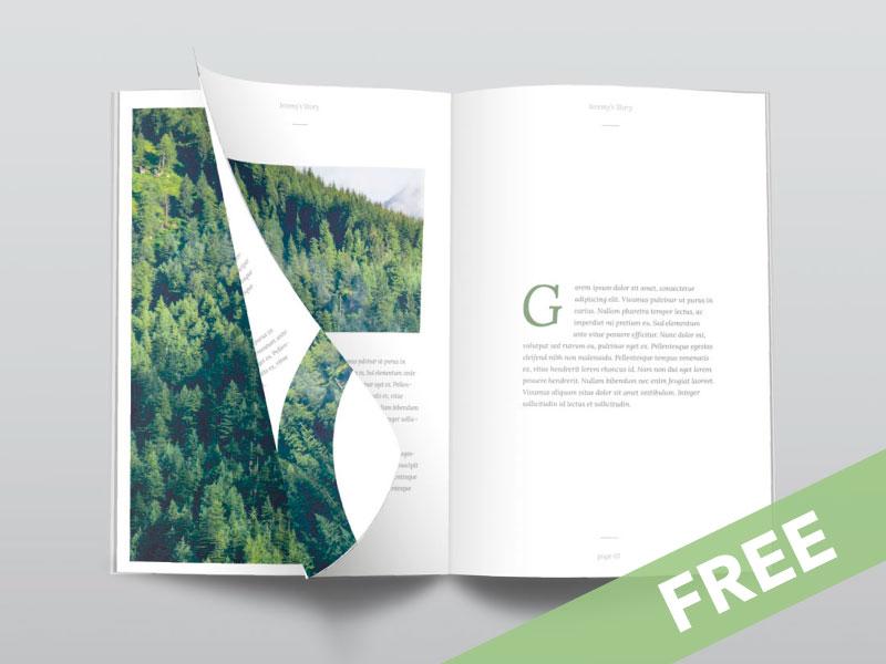 411ce0a6cba02609112ab21afee942bb - Ultra Clean Free PSD Magazine Mockup