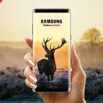 73b80a164a2ae4271b96098c3e29e1c5 150x150 - Free Samsung Galaxy Note 8 Mockup PSD