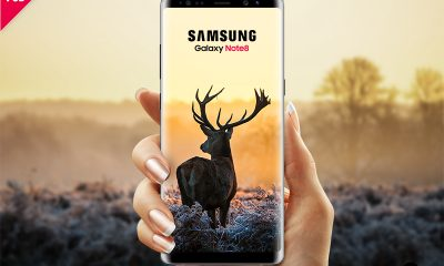 73b80a164a2ae4271b96098c3e29e1c5 400x240 - Download Samsung Galaxy Note 8 Mockup