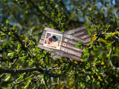 76d7a3ac87e200e6fa15368a7c3ad935 - FREE Mock-up - Tree Business Card