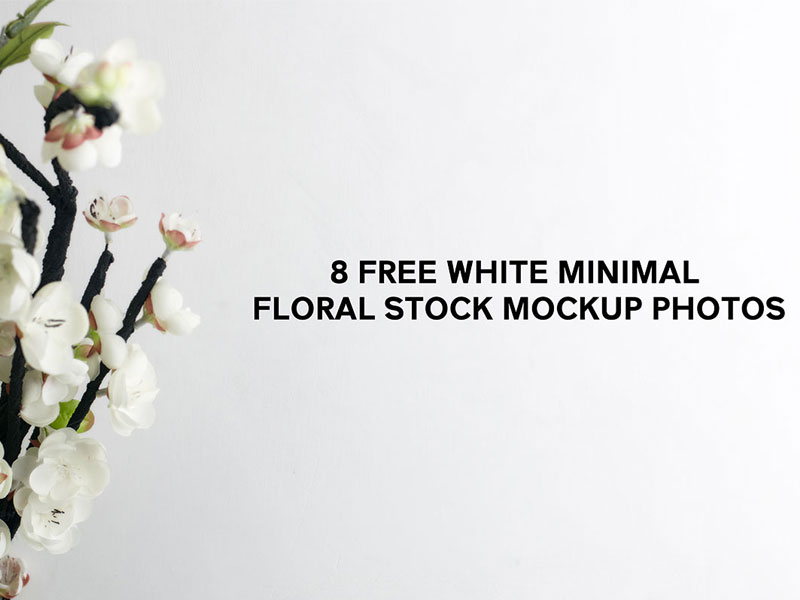 c1160e945ea296dd90a3726796a340cd - 8 Free White Minimal Floral Stock Mockup Photos