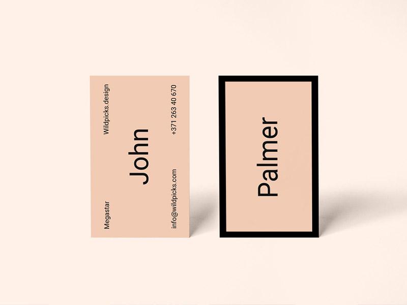 f6c883620134c3c682df8d88aa1c9755 - Palmer - Realistic Freebie Business Card Mockup